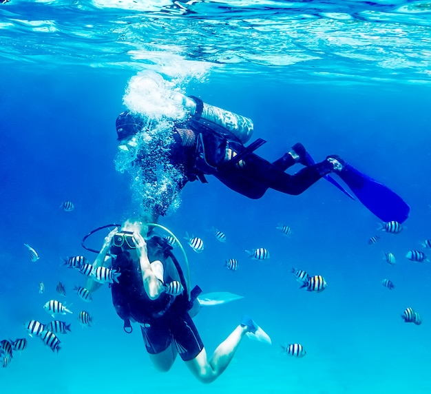 Diver swimming underwater with coral reefs Premium Photo