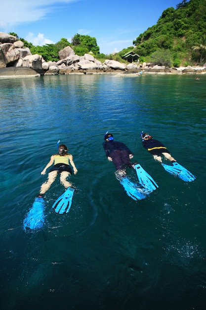 Divers on island in southern thailand, koh tao, chumphon. Premium Photo