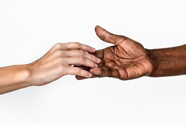 Diverse hands holding each other Premium Photo