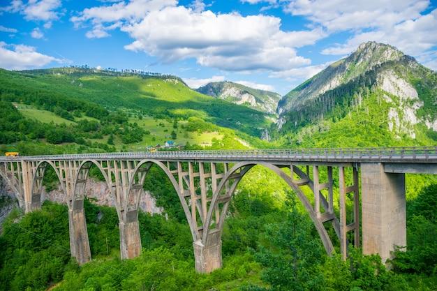 The djurdjevic bridge crosses the canyon of the tara river in the north of montenegro. Premium Photo