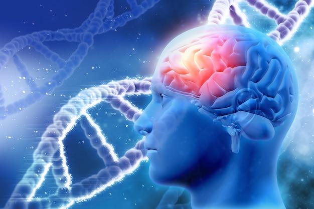 脳やdnaの鎖を持つ男性の頭を持つ3d医学的背景 無料写真