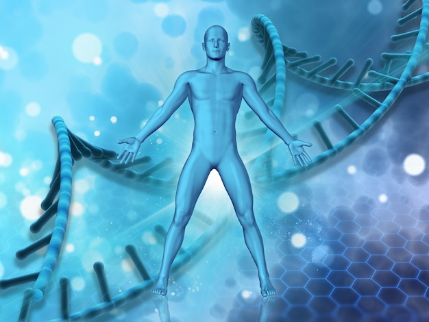 Dnaの鎖の背景に男性の図と3d医療の背景 無料写真