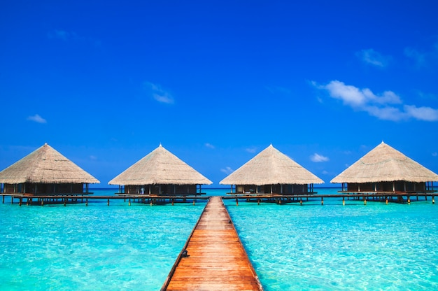 Dock at maldives with clear water Premium Photo