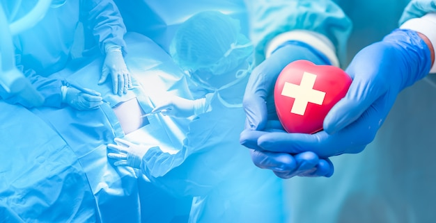 Doctor hands holding red heart with cardiogram, health care concept. Premium Photo