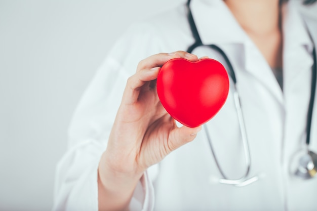 Doctor is holding and showing a red heart. Premium Photo