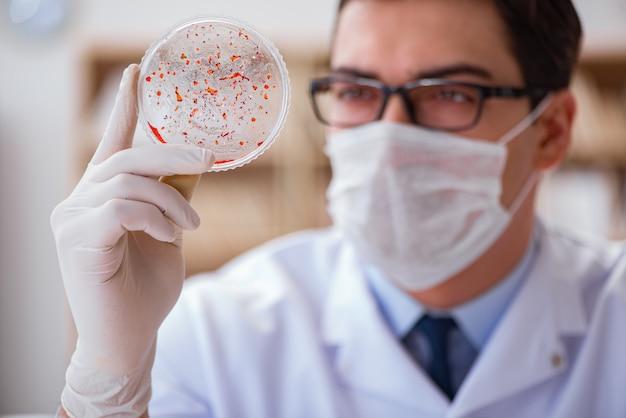 Doctor studying virus bacteria in the lab Premium Photo