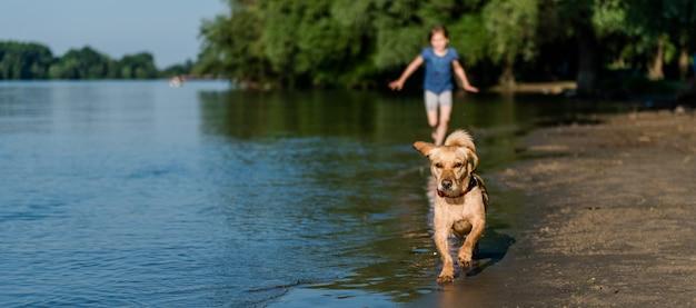 Dog and girl running along beach Premium Photo