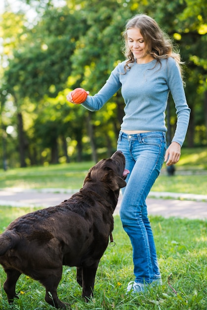 Dog looking at woman holding red ball in park Free Photo