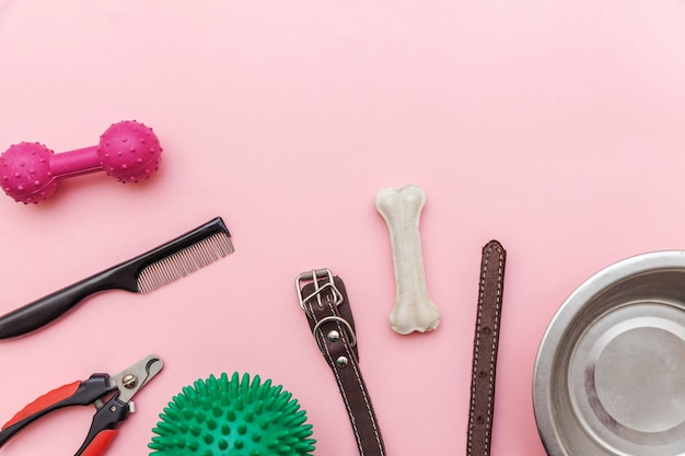 Dog paws toys and accessories for playing and training Premium Photo