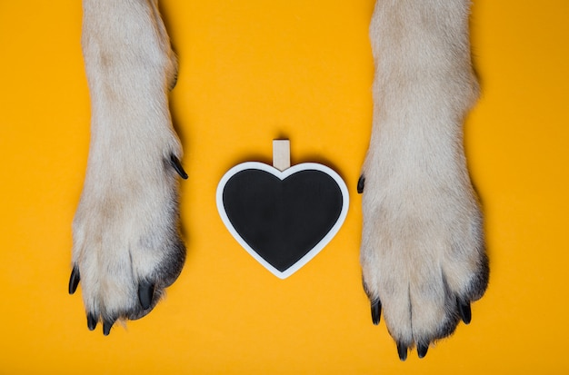 Dog's paws on the floor next to the chalk board in the shape of Premium Photo