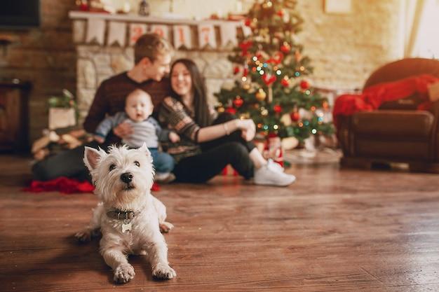 Собака сидит на деревянном полу с семьей фон Premium Фотографии