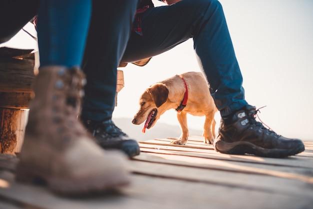 Dog underneath hikers legs Premium Photo