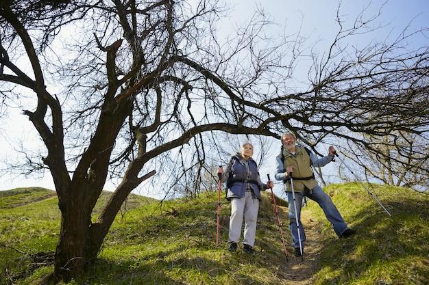 移動することを恐れないでください。晴れた日に木の近くの緑の芝生を歩いて観光服の男女の老家族カップル。観光、健康的なライフスタイル、リラクゼーションと一体感の概念。 無料写真