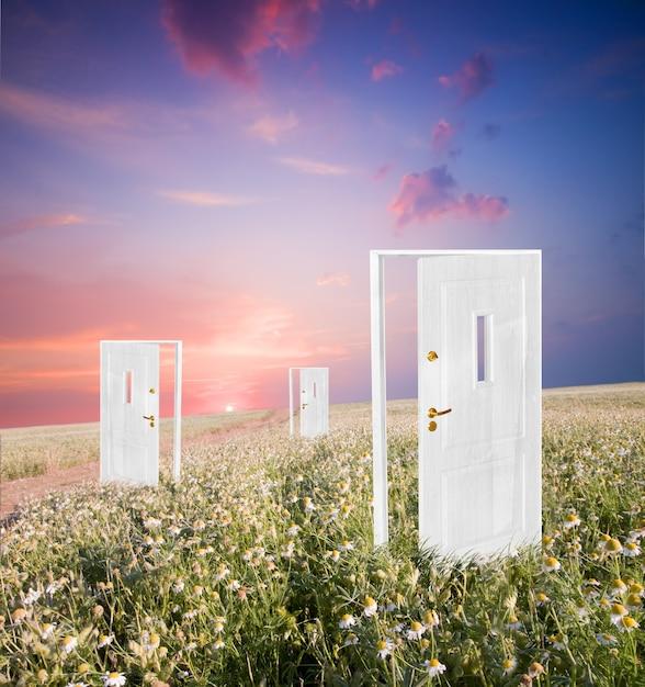 Doors in a field Free Photo