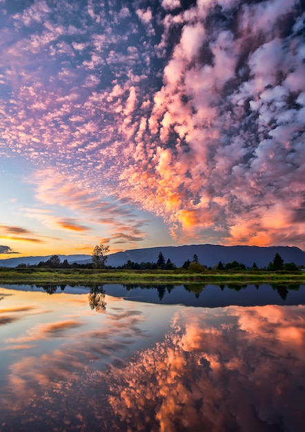 Dramatic pink clouds reflection Premium Photo