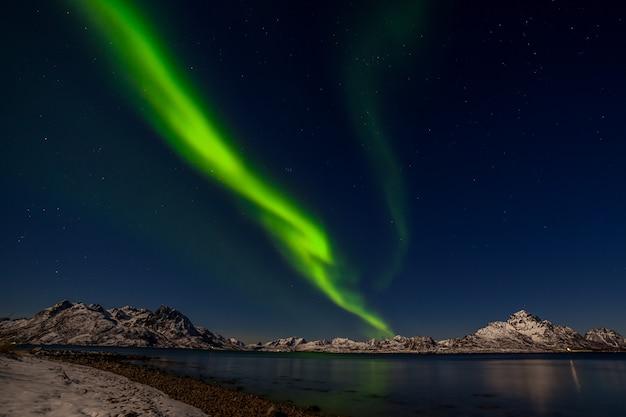 극적인 북극광, 유럽 북쪽의 산에있는 오로라 보 리 얼리 스-lofoten 섬, 노르웨이 프리미엄 사진