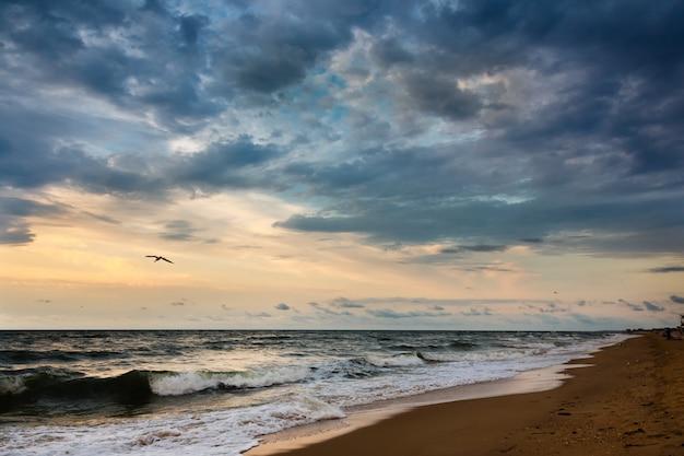 Dramatic sky on a morning seascape. Premium Photo