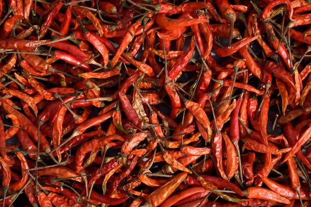 Dried chillies red wall Premium Photo