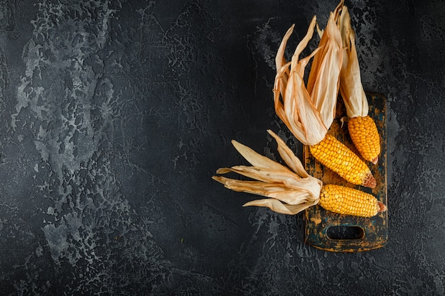 Dried corn on cobs Premium Photo