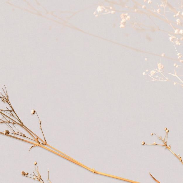 말린 꽃 무늬 내츄럴 디자인 공간 무료 사진
