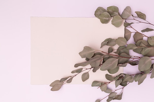 Dried leaves with copy space background Free Photo