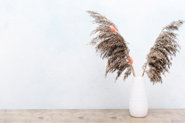 Dried plants decoration in vase Free Photo