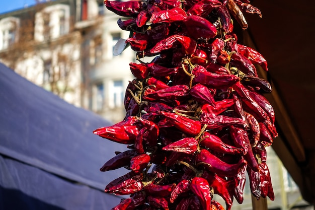 Dried red chillies Free Photo