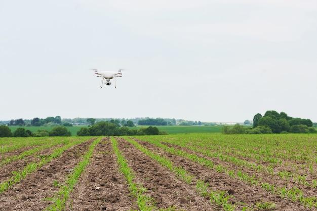 緑のトウモロコシ畑に高解像度デジタルカメラでドローンクアッドヘリコプター 無料写真