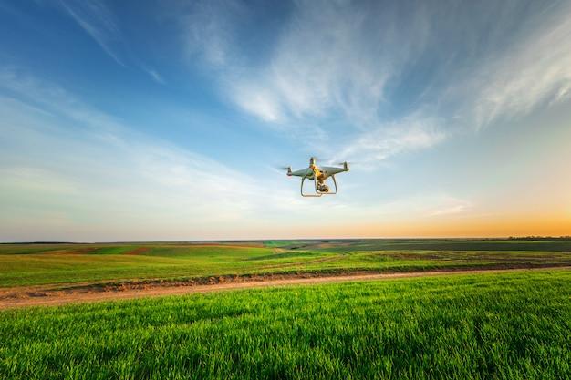 Drone quad copter on yellow corn field Premium Photo