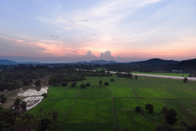 Drone shot aerial view landscape scenic of rural agriculture rice field with evening sunset atmosphere Premium Photo
