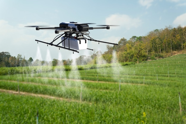Drone spraying pesticide on wheat field Premium Photo
