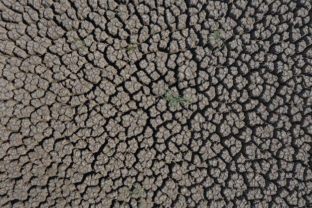太陽に照らされた干ばつ深い割れた地球表面 Premium写真