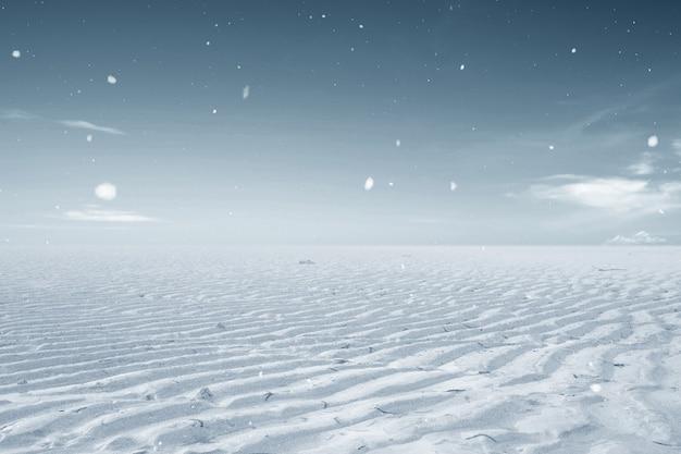 冬の気候の干ばつ土地。環境変化の考え方 Premium写真