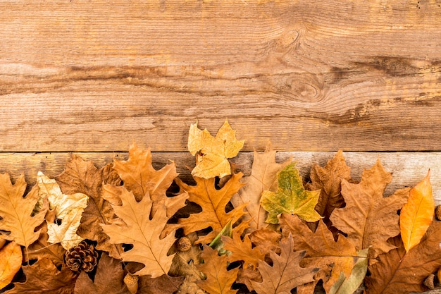 Dry autumn leaves on wooden background Free Photo