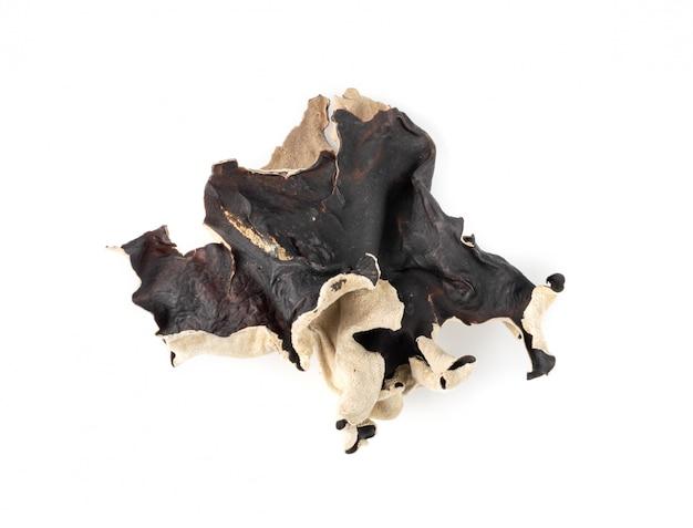 Сухой черный гриб, дерево уха или деревянный гриб уха, изолированные на белом фоне. Premium Фотографии