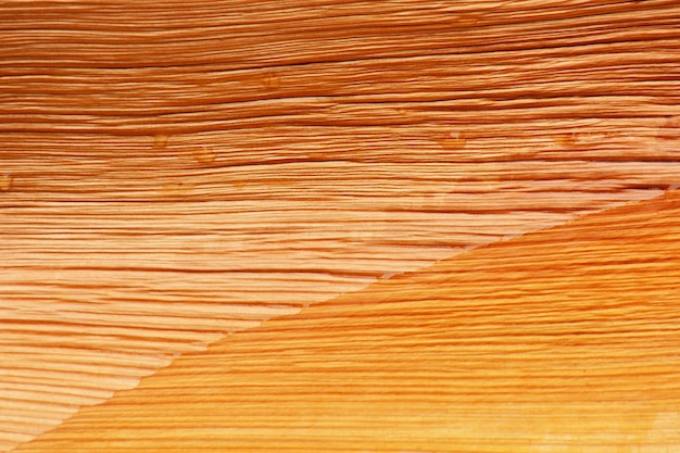 Dry brown palm leaf texture Premium Photo