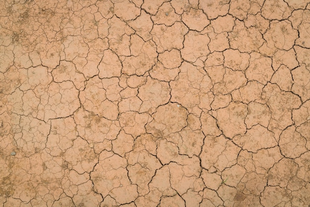 Dry and cracked ground texture . Free Photo