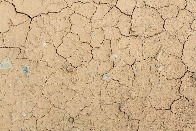 Dry cracked land Premium Photo