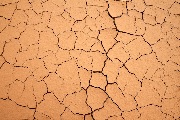 Dry craked earth background, soil ground texture. Premium Photo