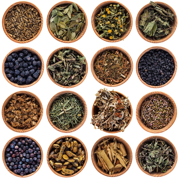Dry herbs in round bowls. large selection of different herbs Premium Photo