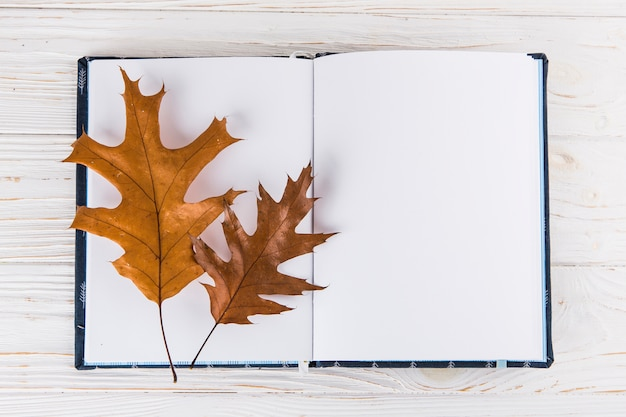 Dry leaves on blank notebook on table Free Photo