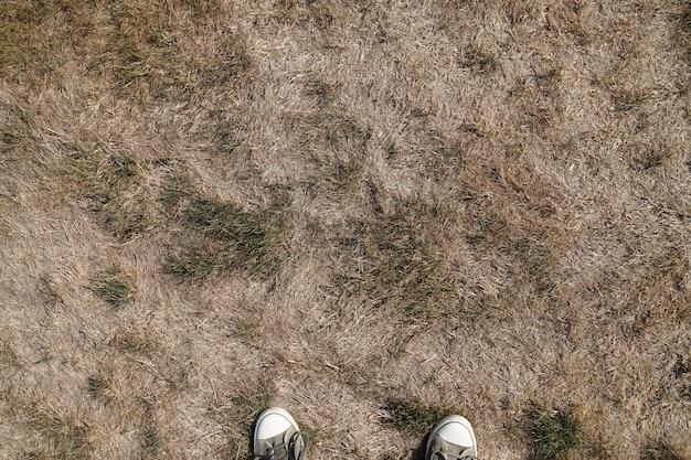 낮 동안 들판에서 마른 진흙 땅 무료 사진