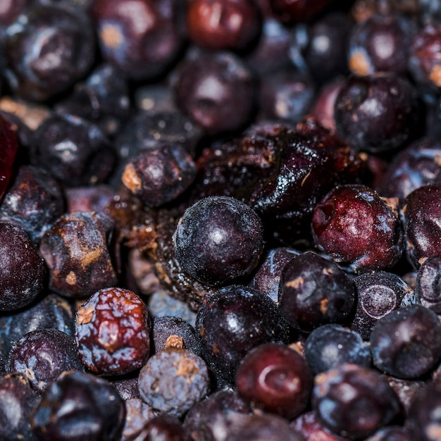 Dry natural plums on market for sale Free Photo