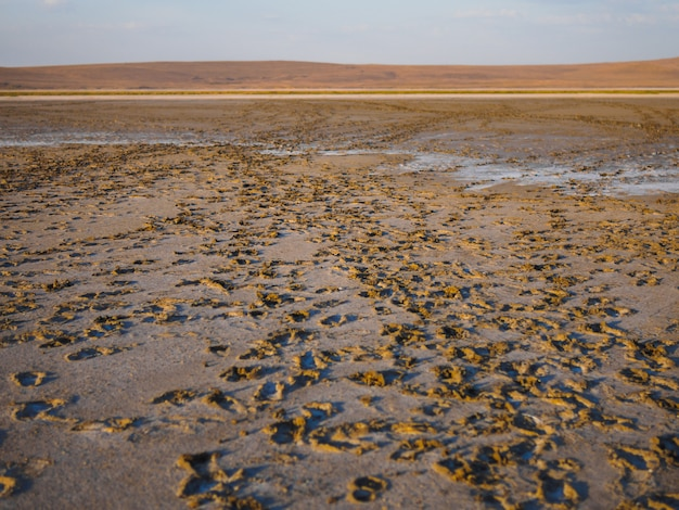 Dry salt lake in our journey. traces are left by tourists. Premium Photo