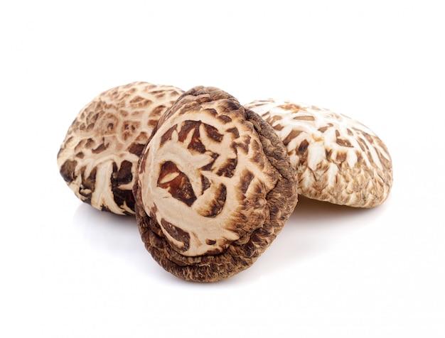 Dry shiitake mushroom isolated Premium Photo