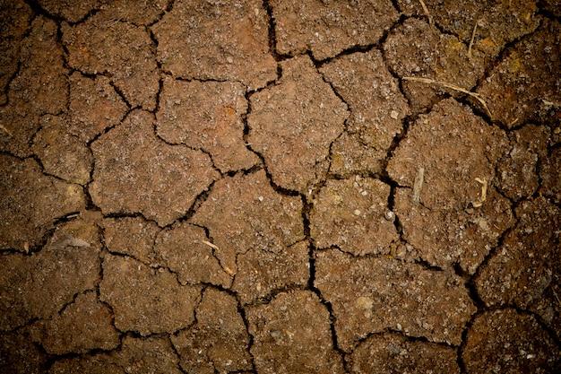 Dry soil Premium Photo