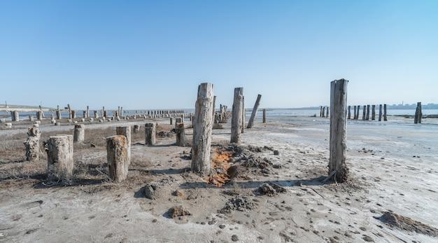 Drying lake near odessa, ukraine Premium Photo