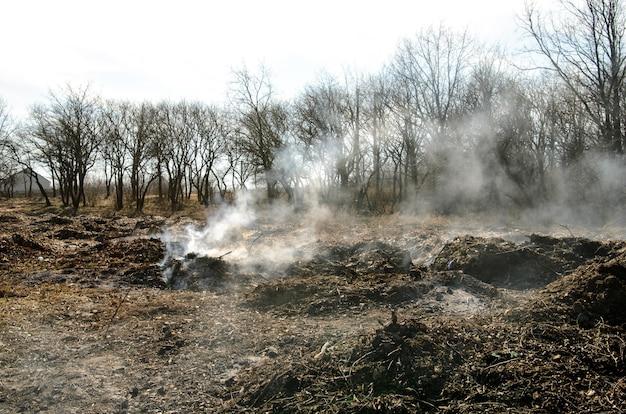 Дамп. загрязнение окружающей среды. Premium Фотографии