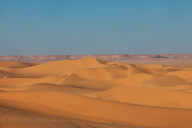 Dunes of sand in sahara desert, algeria Premium Photo