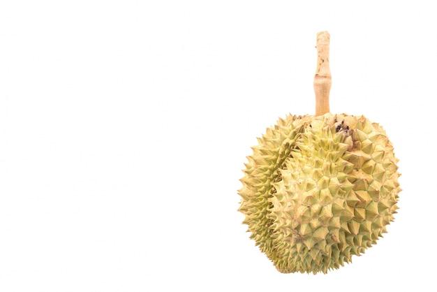 Durian fruit on white background Free Photo